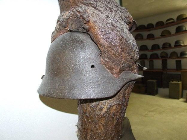 Vojna vydáva svedectvá aj po desaťročiach. Vojenská prilba sa zachovala vrastená do stromu.