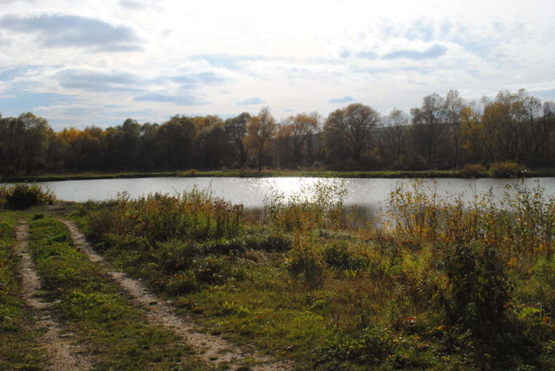 Na dne vypusteného rybníka našli policajti falošné mince.