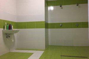 Sprcha domáceho mužstva.
