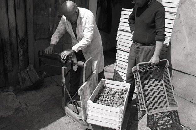 Nakupovač Jednoty SD - strediska Bušince, František Bán (vľavo), vykupuje slimáky.