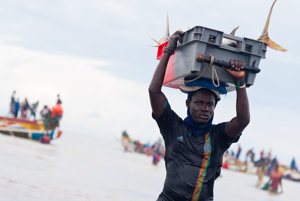 Senegalčania sú závislí od rybolovu. Ak sa nevedia uživiť, musia ujsť.