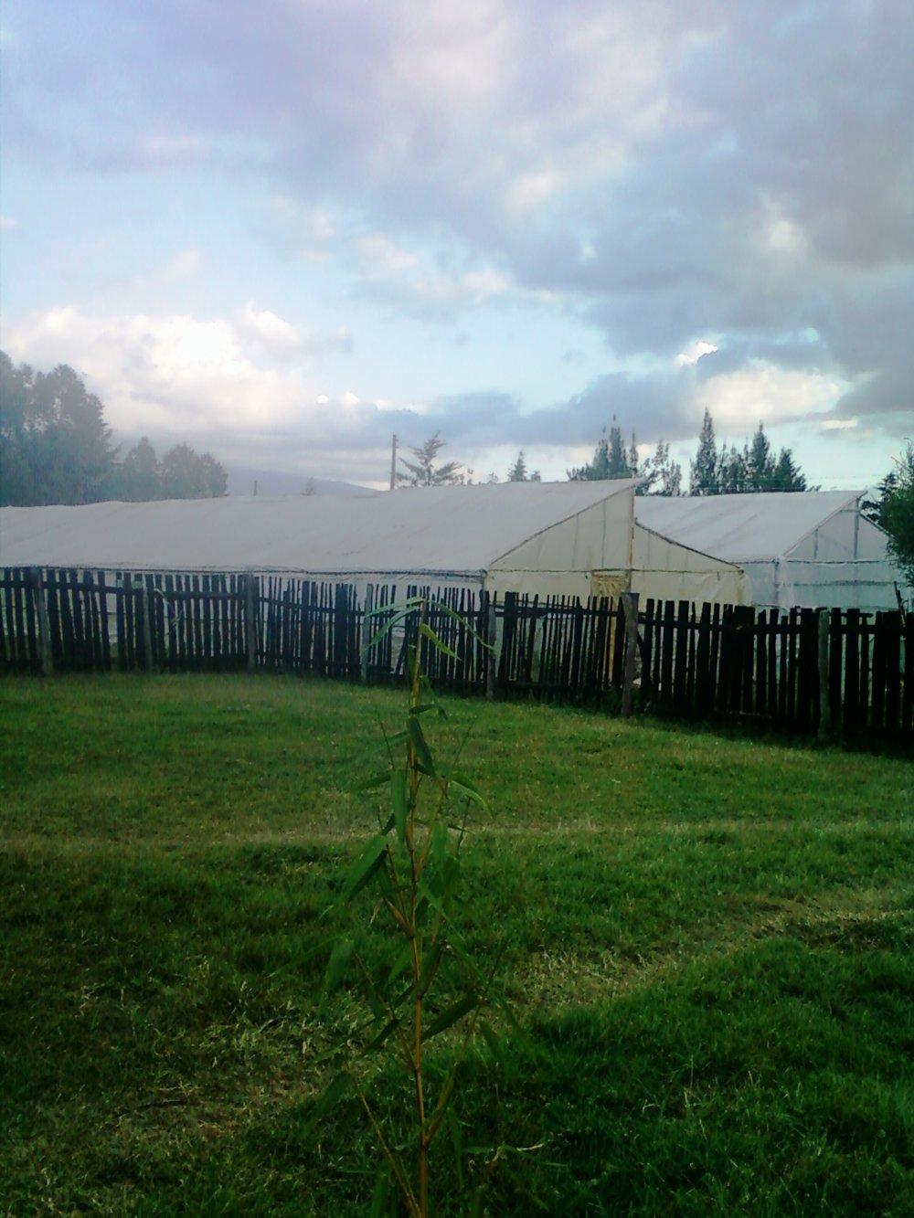 Keňa nie je priveľmi pohostinnou krajinou pre poľnohospodárstvo.