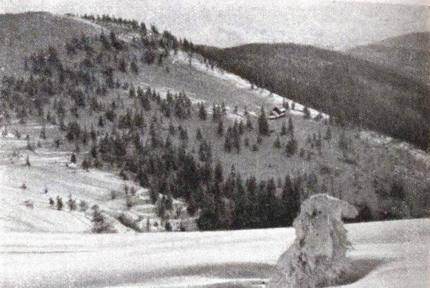 Lesy v okolí Zlatej Idky v roku 1940.