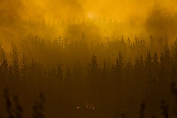 Požiar lesa v Chile