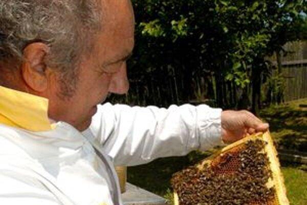 Včelári chcú v Prievidzskom okrese založiť niekoľko včelárskych krúžkov pre deti a mládež.
