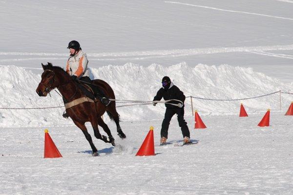 Na skijoring potrebujú oproti furmanom viac snehu.