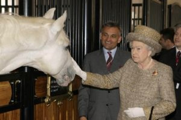 Kráľovná Alžbeta II. na prehliadke lipicanov v Slovinsku.
