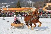 Preteky gazdovských koní v Terchovej.