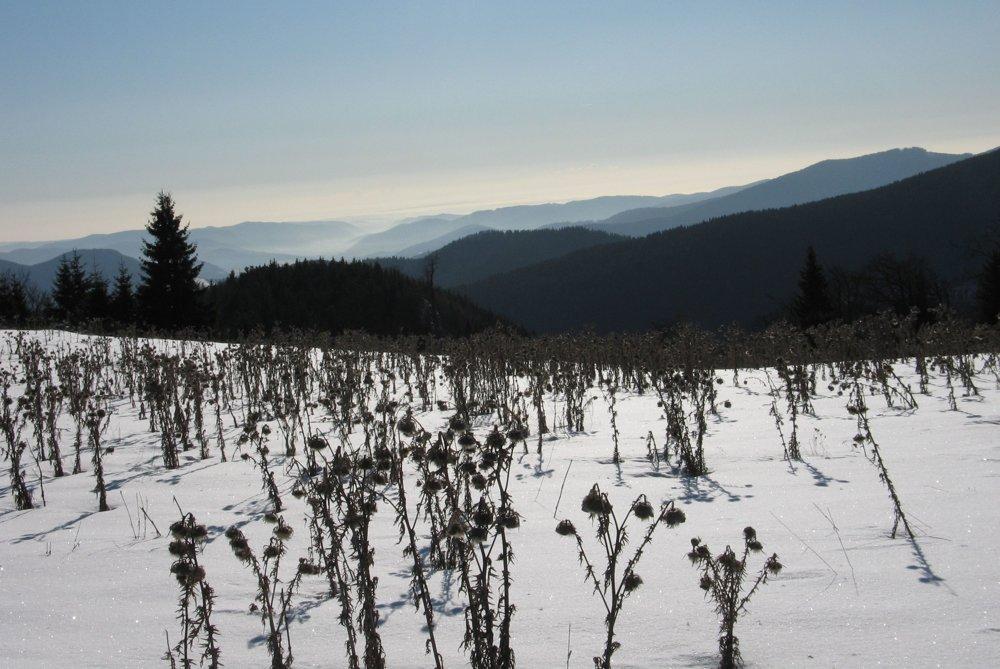 Výhľady z vrcholového plató Ondrejiska smerom na Revúcku vrchovinu a Stolické vrchy.