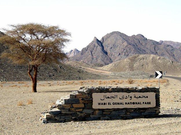 Egypt: Národný park Wadi el Gemal na pobreží Červeného mora.