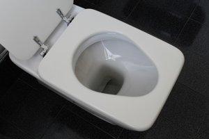 11. Záchodová doska. Na 10 štvorcových centimetrov pripadá v priemere 266 mikroorganizmov.
