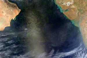 Satelitný záber NASA z 2. marca 2017. Riasy sa rozliehajú na ploche o veľkosti Mexika. Ťahajú sa cez celé Arabské more až k Indii.