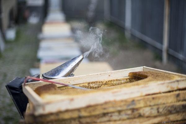Výroba medu. Vydymovanie včiel.