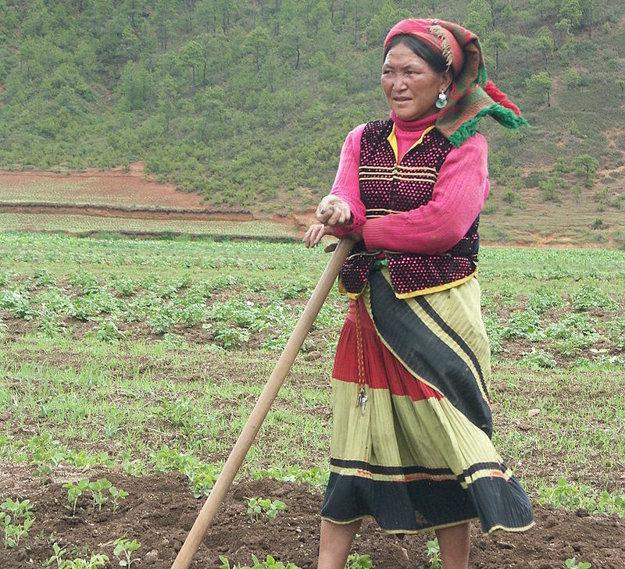 Žena k kmeňa Mosuov na poli