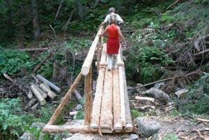 Mostíky v Parichvoste a Bobroveckej doline urobili tamojší urbárnici. Po zime sú zničené.