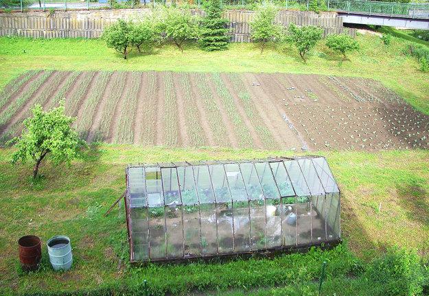 Takto vyzerala záhrada pred zničením.