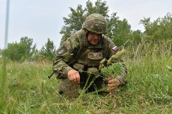 Ukladanie míny počas výcviku.
