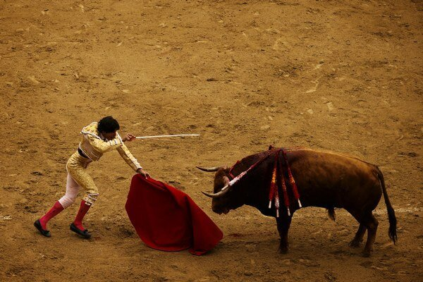 Býčie zápasy sú v Španielsku veľmi populárne.