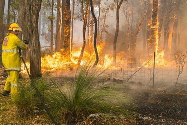 Hasič zasahuje pri požiari v meste Perth Hills.
