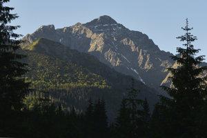 Ranné Tatry z Poľany pod Muráňom v Javorovej doline, vľavo je Snehový štít, druhý zľava je Zadný Ľadový štít a najvyšší je Ľadový štít.