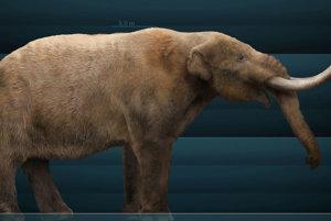 Rekonštrukcia podoby mastodonta.