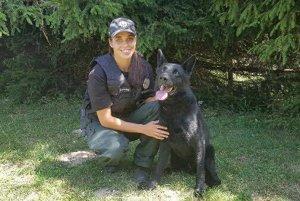 Policajný pes Volf.