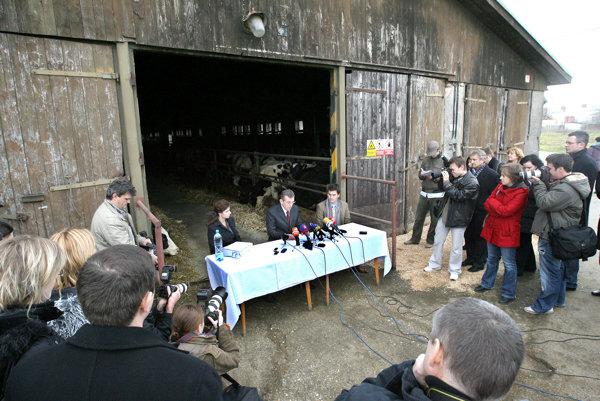 Rozlúčková tlačová beseda ministra pôdohospodárstva Miroslava Jureňu (HZDS) pred kravínom v novembri 2007.
