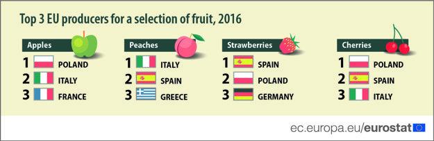 Rebríček top pestovateľov vybraného ovocia za rok 2016.