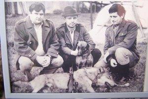 Za trofej tohto vlka dostal Peter Roch z Turian v roku 1988 zlatú medailu.