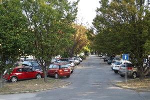 Platené pakrovisko patrí mestu, rastie na ňom množstvo stromov.