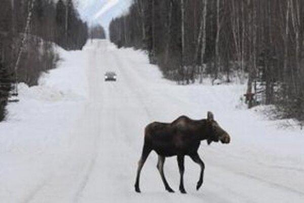 Cesta do mesta Anchorage.