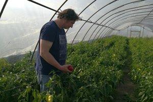 Juraj Barani sa živí pestovaním zeleniny.