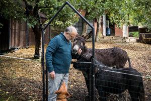 Adamkovci majú vedľa penziónu malú zvieraciu farmu.