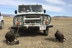Lov s orlami je dnešnom Mongolsku stále populárny.