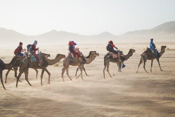 Safari v saharských pieskových dunách