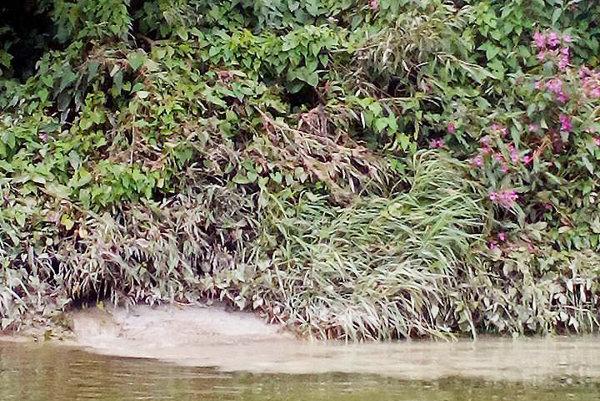 Znečistená voda vytekala rovno do rieky. Rybári sú presvedčení, že vychádzala zareálu betonárky.