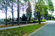 Cintorín v Senci.