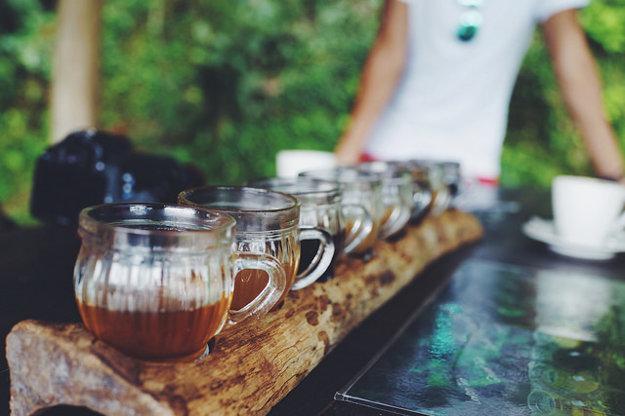 Ochutnávka cibetkovej kávy