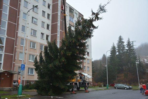 Vianočný stromček z Kemi.