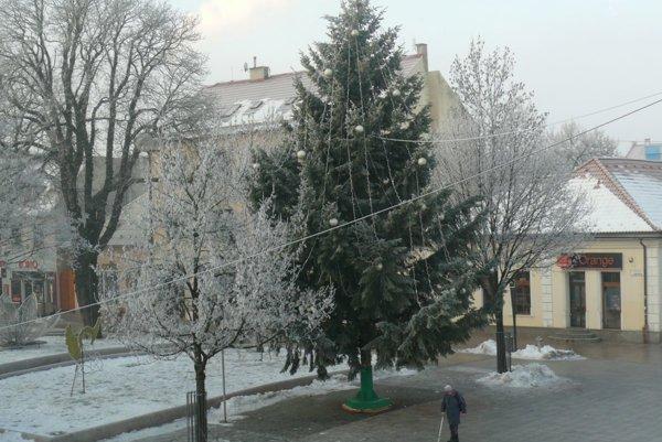 Vianočný stromček vMartine má 12 metrov.