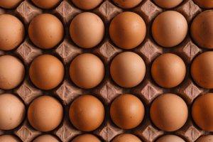 Bielkoviny vo vajíčku sú stabilným zdrojom energie, ktorý sa neodráža na zvýšenom krvnom cukri. Aminokyselina leucín stimuluje produkciu energie v bunkách a povzbudzuje rozklad tukov pri výrobe energie. Okrem toho sú vajcia bohaté na vitamíny B, ktoré pomáhajú enzýmom plniť svoju úlohu pri premene potravín na energiu.