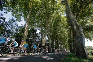 Pelotón so žltým Talianom Vincenzom Nibalim počas 12. etapy Tour de France z Bourg-en-Bresse doSaint Etienne. (AP Photo/Christophe Ena)