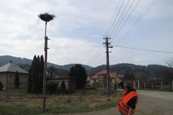 V obci Nemecká hniezdia bociany už niekoľko rokov. Ani teraz tomu nie je inak.