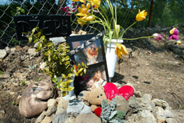 Prvý zvierací cintorín u nás zriadili v Šútovciach, v Bratislave rozbehla podobnú iniciatívu Elena Vacvalová.