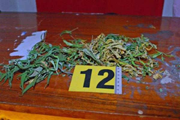 Marihuanu pestovali v pivnici.