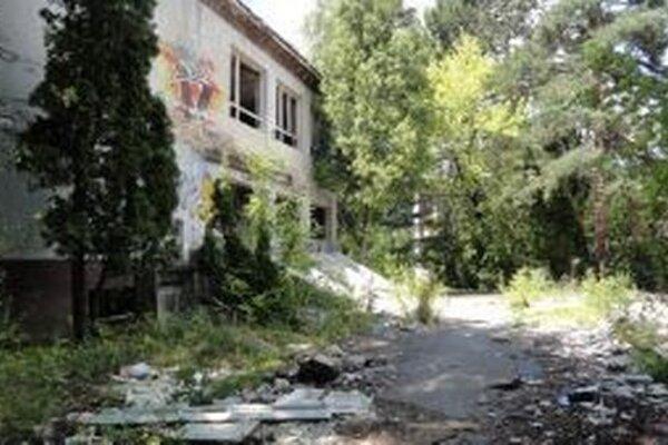 Ruinu z väčšej časti zakrývajú stromy.