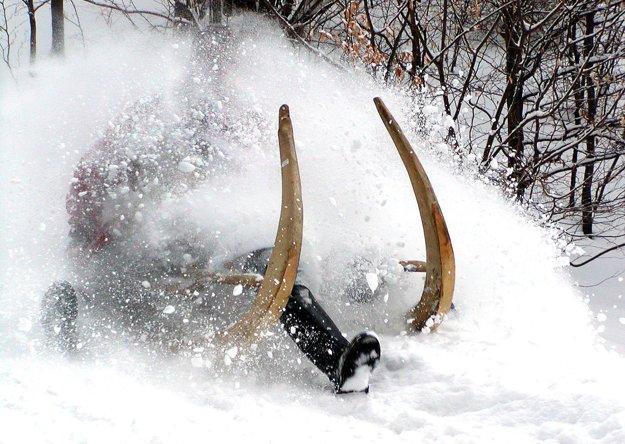 Krňačky patria neodmysliteľne k zime v Tureckej.