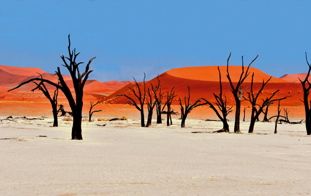 Mŕtve jazero Sossusvlei v Namíbii.