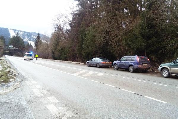 Pri návaloch lyžiarov, hlavne cez víkendy aprázdniny, riadi dopravu polícia.