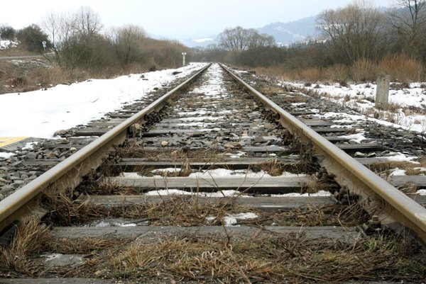 Vlak stanicou prešiel bez problémov.
